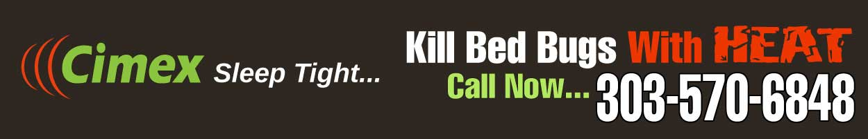 Which System Is Best To Kill Bed Bugs Cimex Technologies